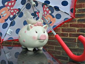 Piggy bank under umbrella to save money for a rainy day